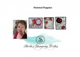 Painted Poppies…